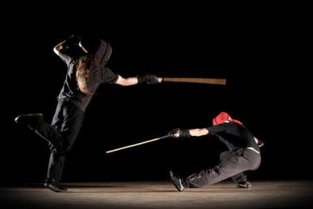Canne de combat et bâton français: technique, jeu et traditions