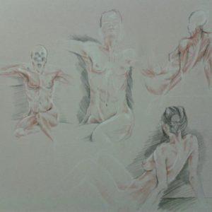 anatomie-4