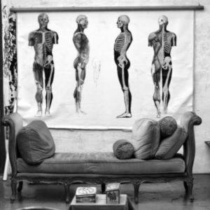 modèle de squelettes et corps humain dans atelier de dessin