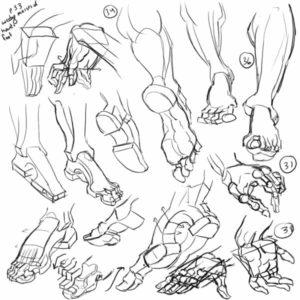 morpho-pieds-copie-hogarth-moyen
