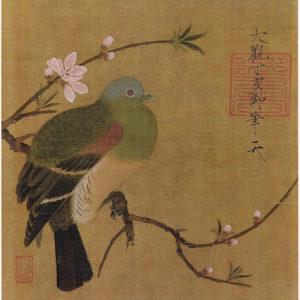 File source: http://commons.wikimedia.org/wiki/File:Momohatozu.jpg