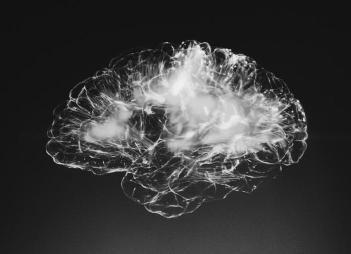 image du réseau neuronal du cerveau