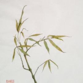 dani-bambu_orig-light