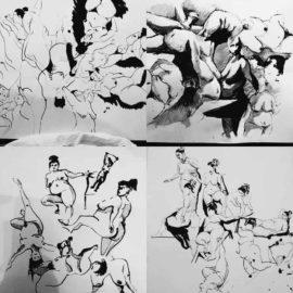 dessin-et-morpho-18