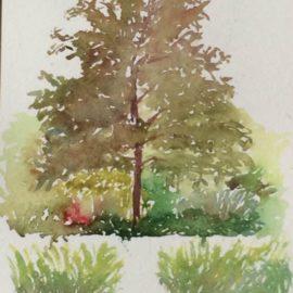 stage-aquarelle-arbre-paysage